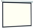 Buy ProScreen Projection Screen 220 x 141 cm